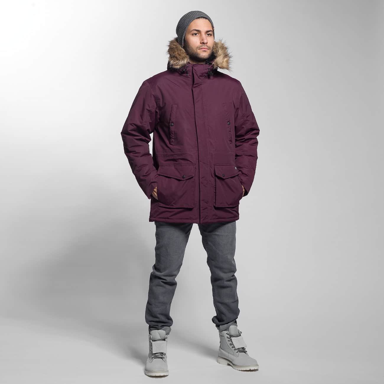 Dickies Winter Jacket Curtis red