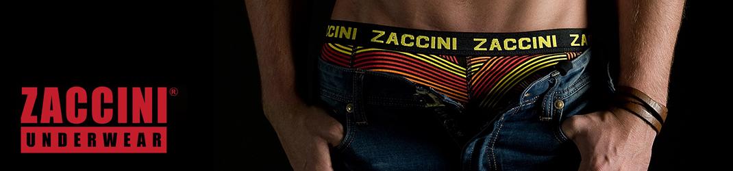 Zaccini online shop
