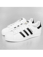 adidas Superstar Nigo Bear Sneakers Footwear White-Core Black-Footwear