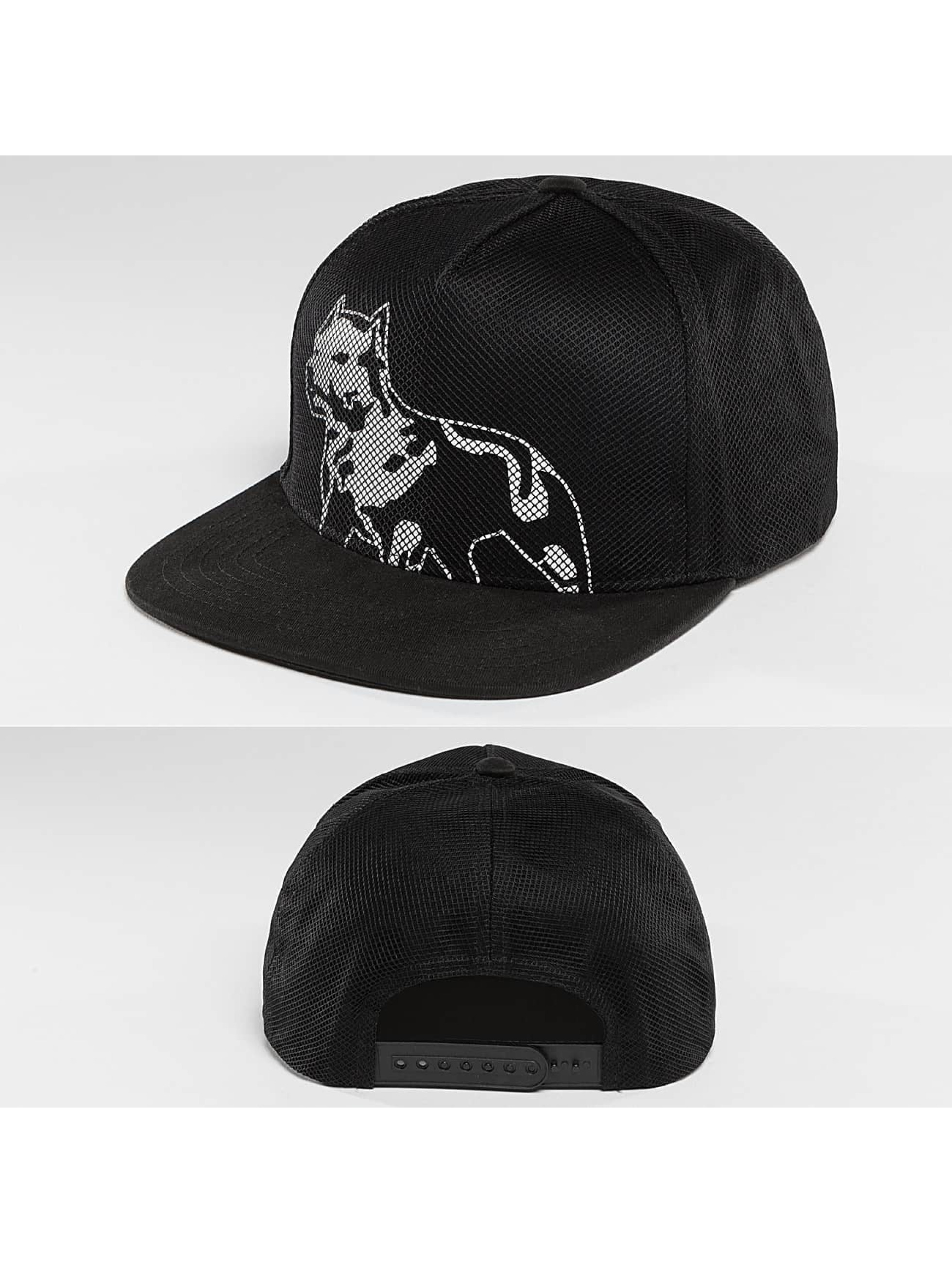 Amstaff Snapback Cap Tolero black