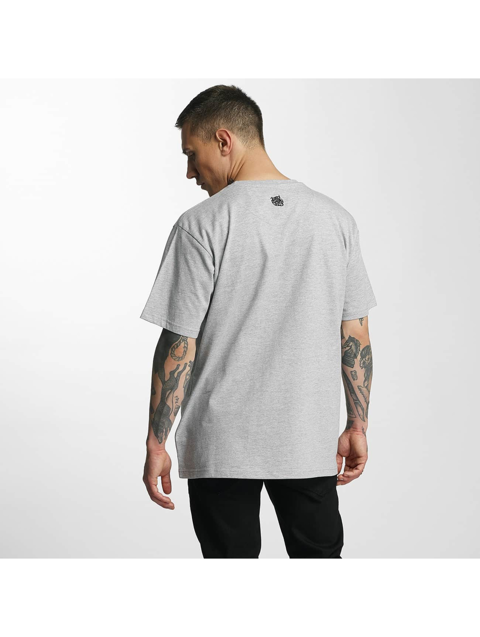 Dangerous DNGRS T-Shirt Don Bomb gray