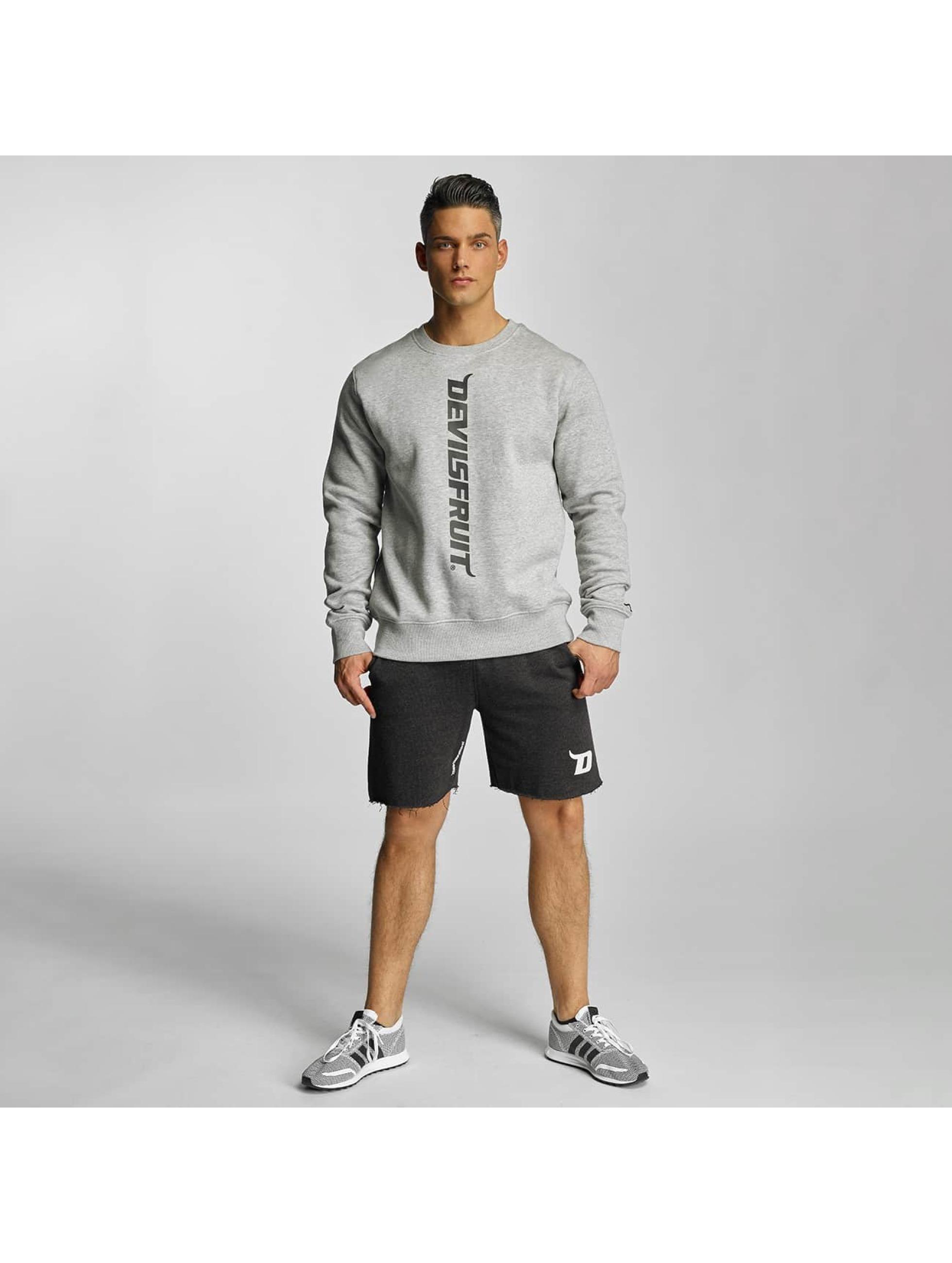 Devilsfruit Pullover Logo gray
