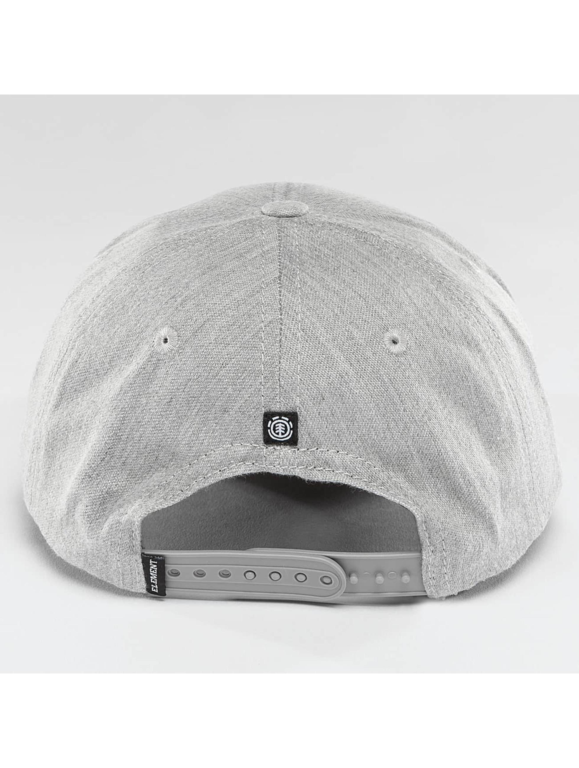 Element Snapback Cap Classic Treelogo gray