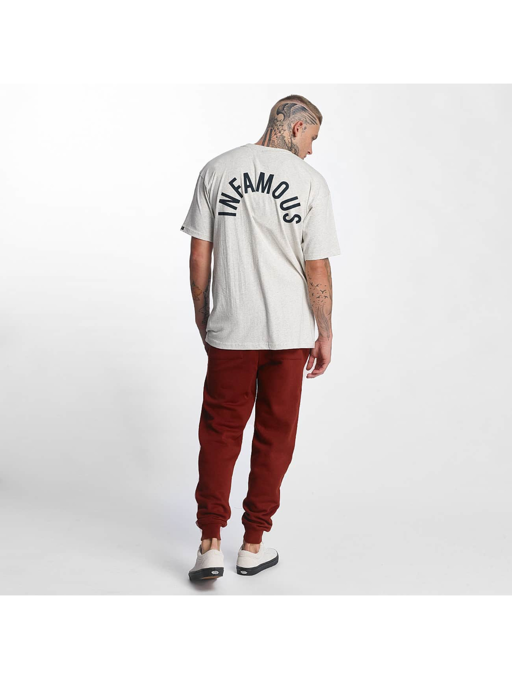 Grimey Wear T-Shirt Overcome Gravity gray