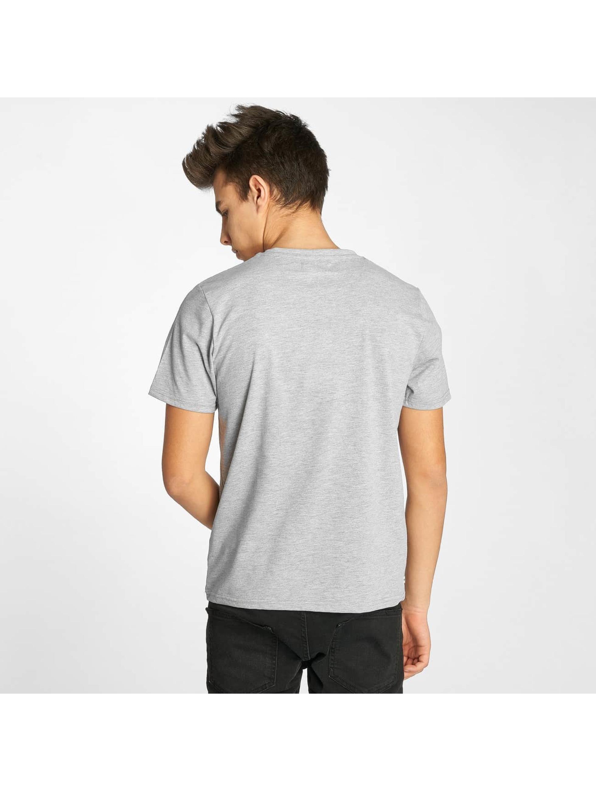 Kulte T-Shirt New York gray