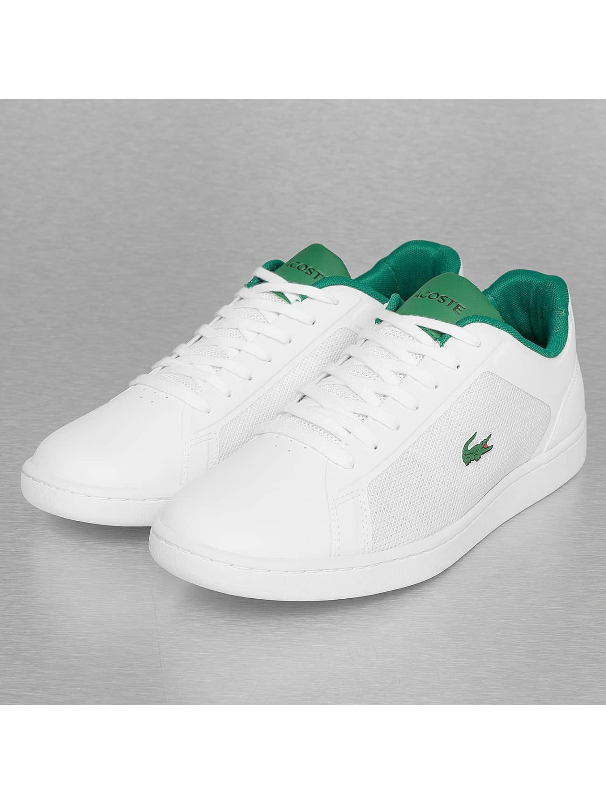 Dc Low Top Shoes