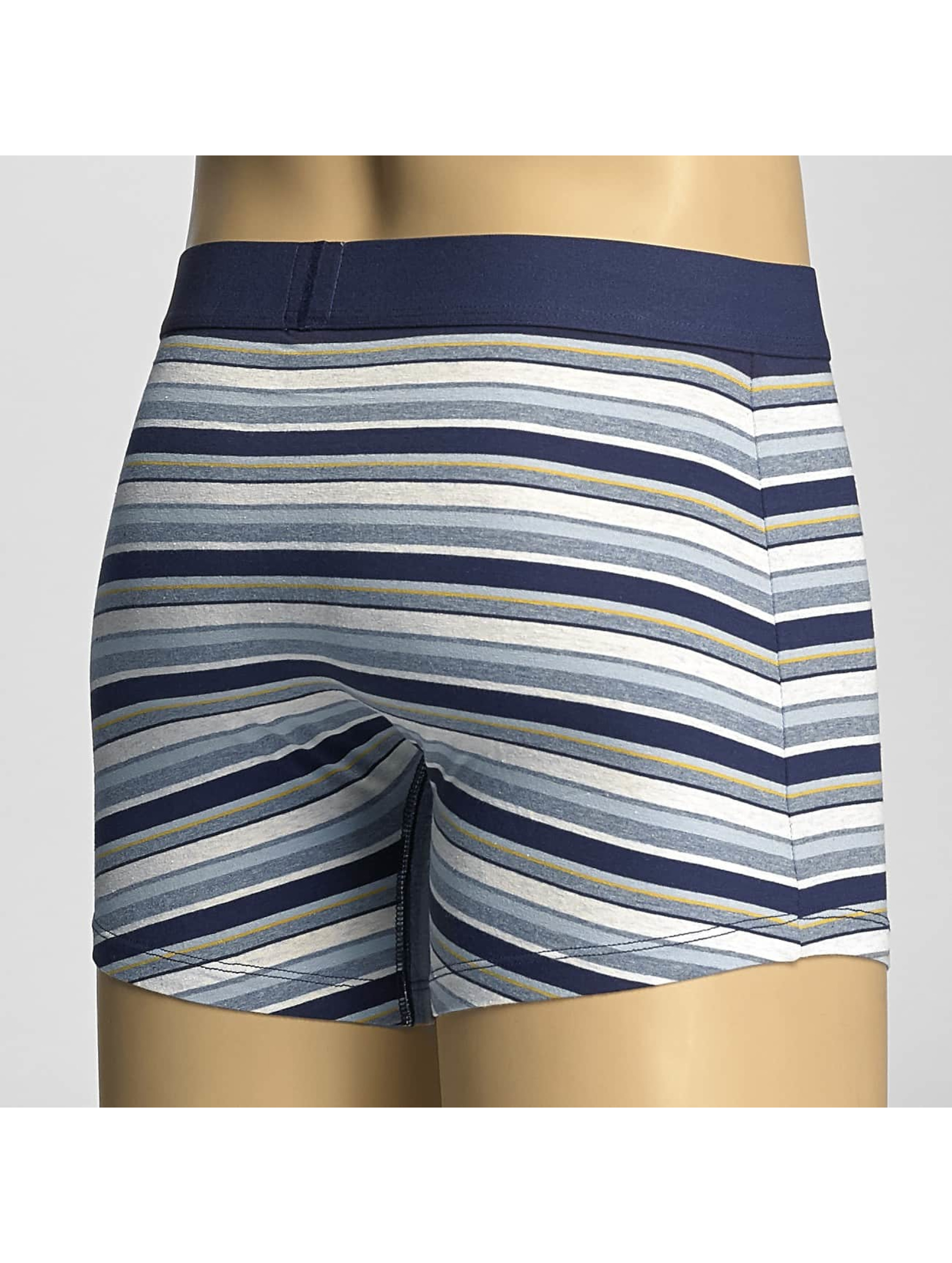 Levi's® Boxer Short Multi Color Stripe blue