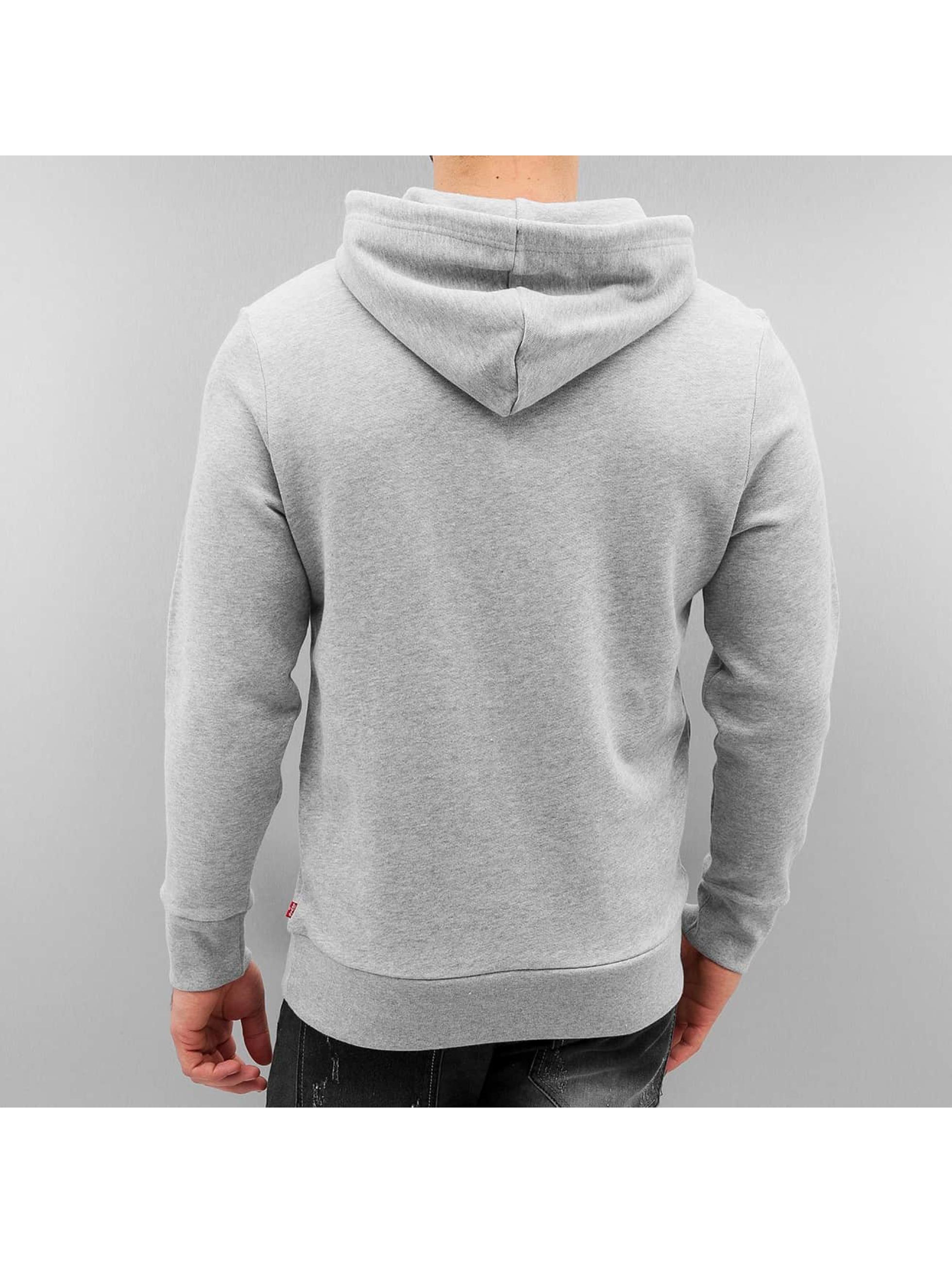 Levi's® Hoodie Graphic gray