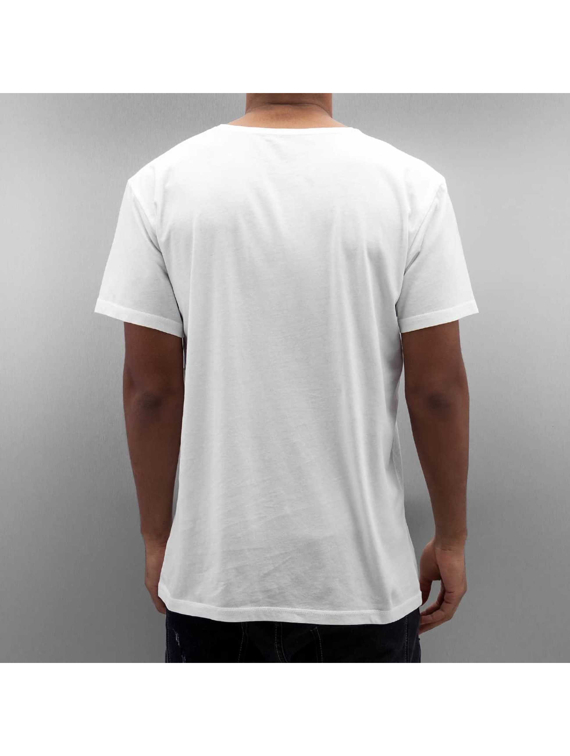 Quiksilver T-Shirt Mellow Dingo white