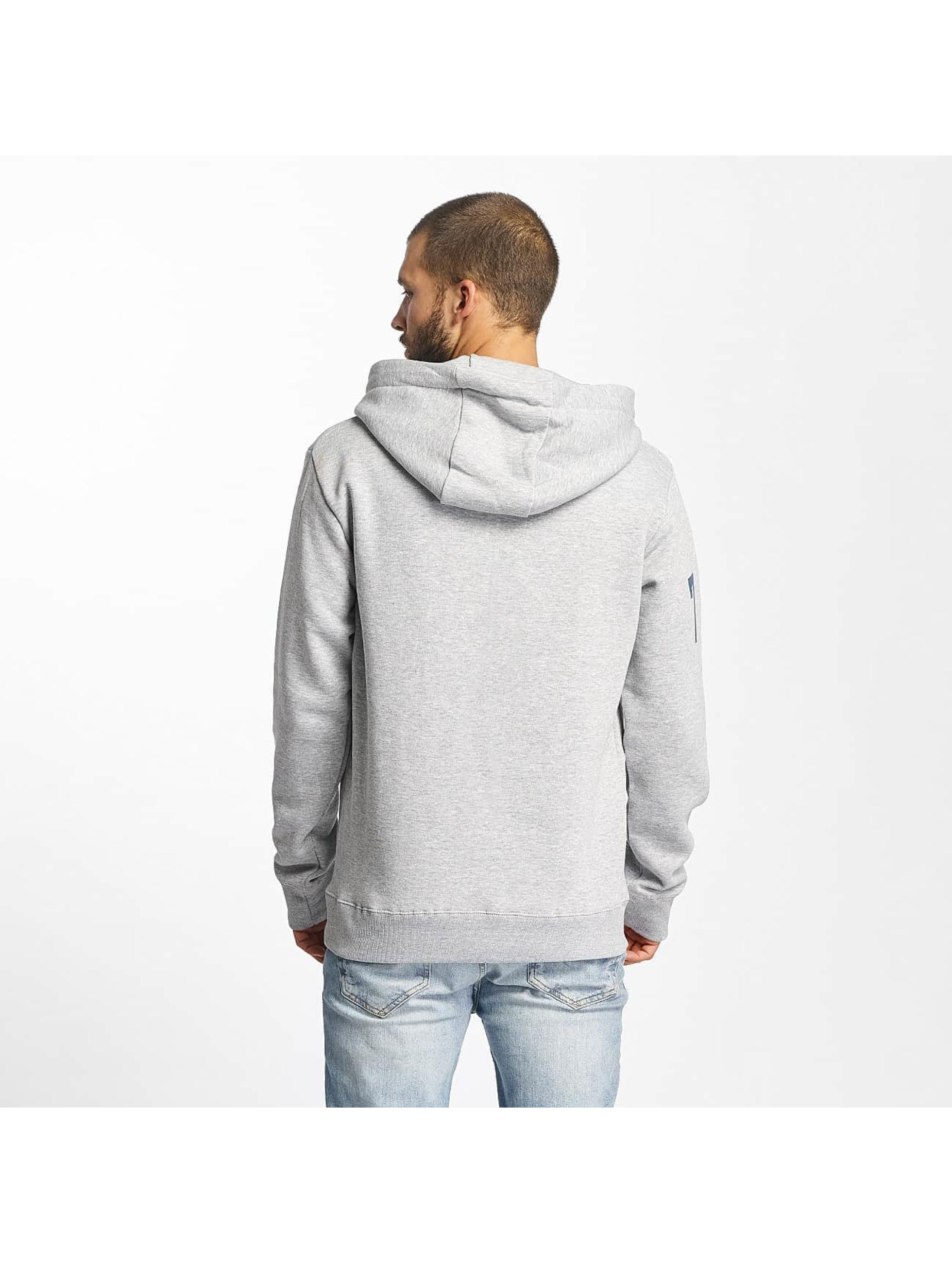 Sublevel Hoodie Printed gray