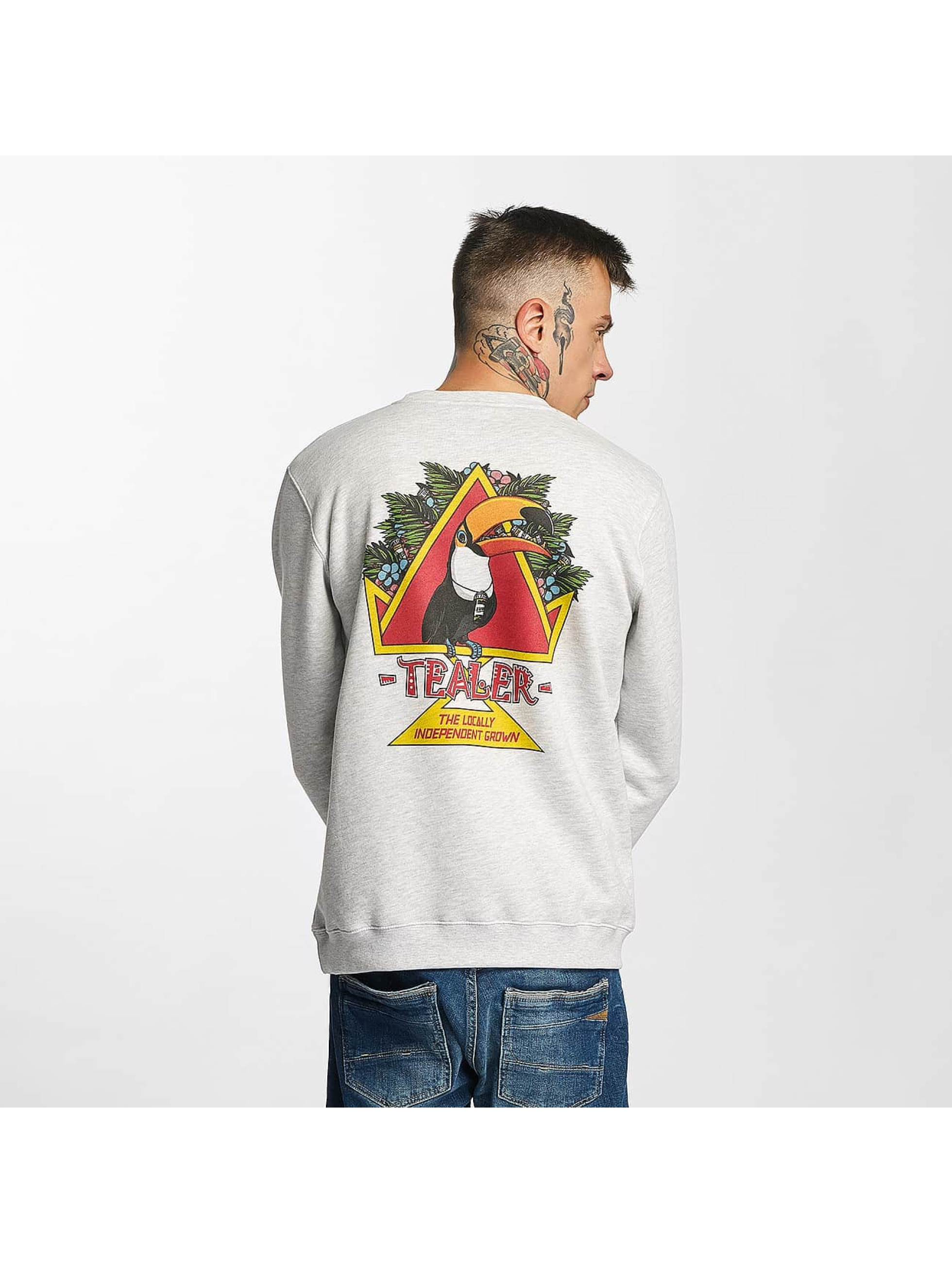 Tealer Pullover Toucan gray