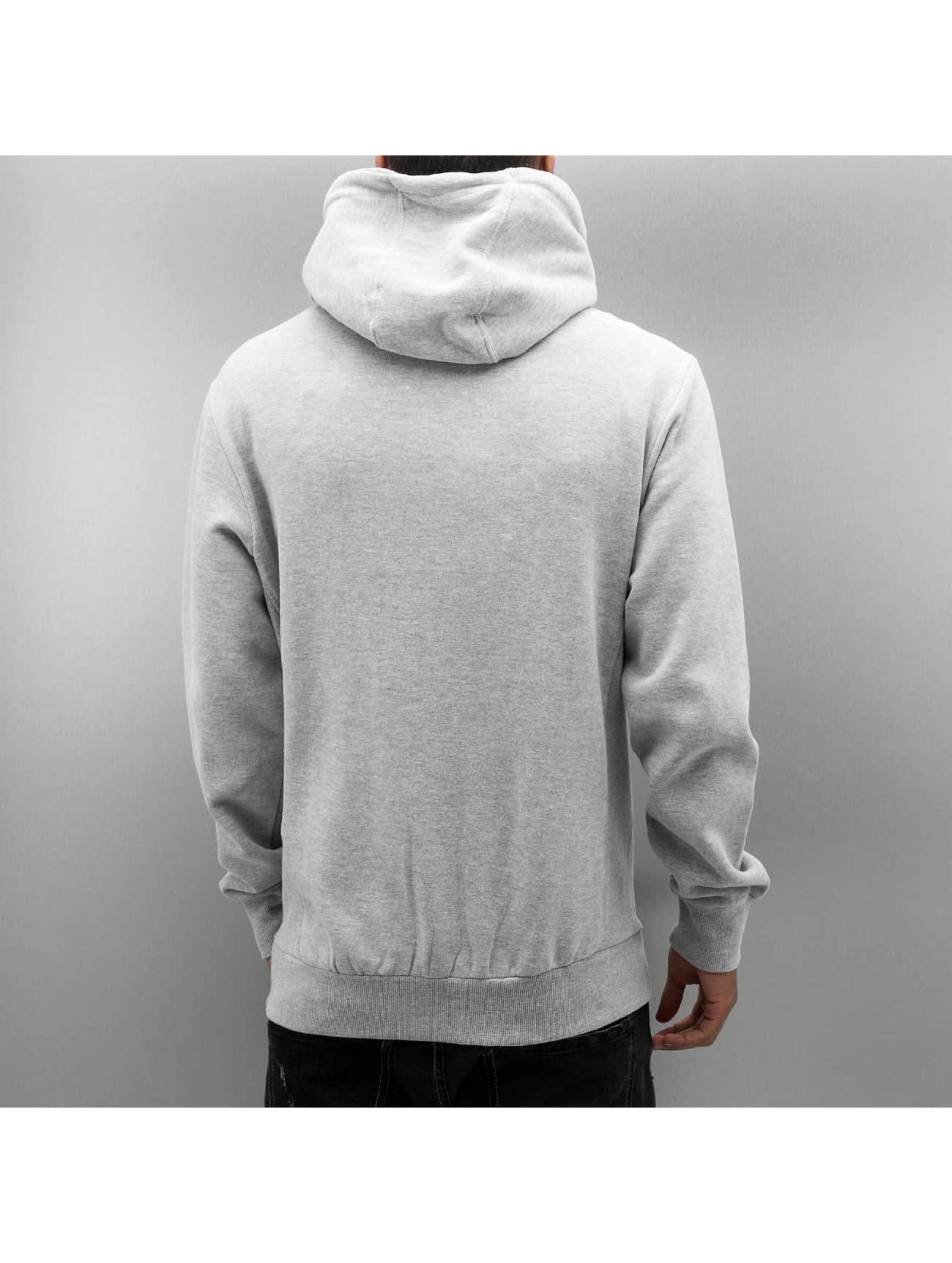 Urban Surface Zip Hoodie Cameron gray