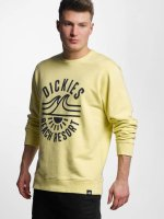 Dickies Pullover Marion yellow