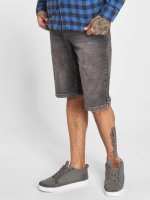 Dickies Short Pensacola gray