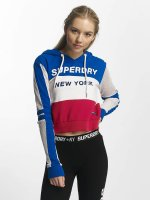 Superdry Hoodie Mesh colored
