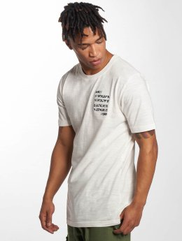 Anerkjendt T-Shirt Rod beige