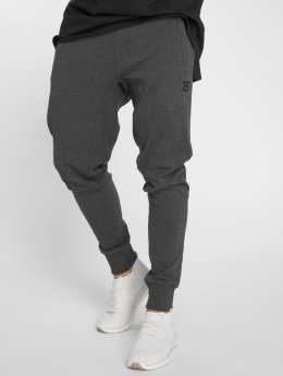 Better Bodies Sweat Pant Tapered  gray