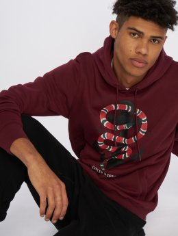 Cayler & Sons Hoodie C&s Wl Anchored red