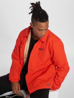 Dickies Lightweight Jacket Dewitt orange
