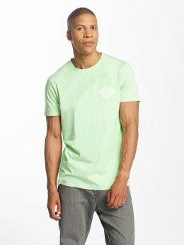Homeboy T-Shirt Take You Home green