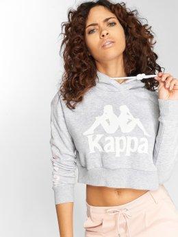 Kappa Hoodie Tinki gray