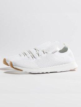 Native Sneakers AP Mercury LiteKnit white