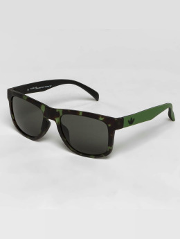 adidas originals Sunglasses originals green