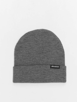 Dickies Hat-1 Alaska gray