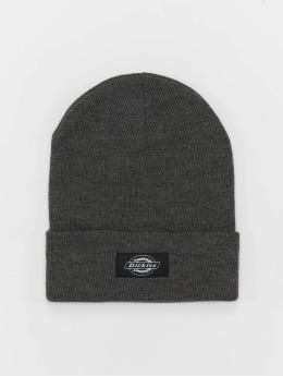 Dickies Hat-1 Yonkers  gray