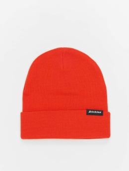 Dickies Hat-1 Alaska orange