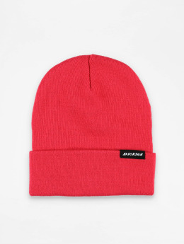 Dickies Hat-1 Alaska pink