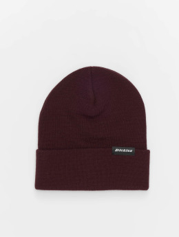 Dickies Hat-1 Alaska red