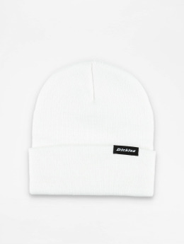 Dickies Hat-1 Alaska  white