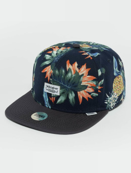 Djinns Snapback Cap CP Pineapple colored