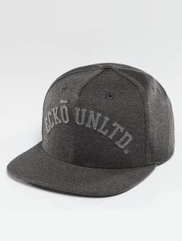 Ecko Unltd. Melange College Snapback Cap Anthracite