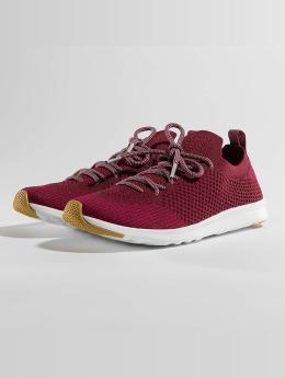 Native Sneakers AP Mercury LiteKnit red