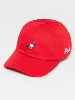 Staple Pigeon Snapback Cap Pigeon Dad red