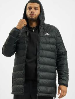 adidas Originals Parka Ess Down black
