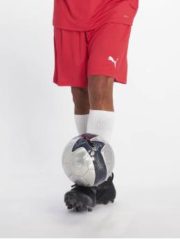Puma Performance Soccer Shorts Liga Core red