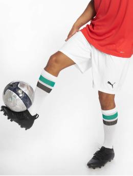 Puma Performance Soccer Shorts Liga Core  white