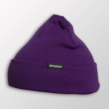 Dickies Hat-1 Alaska purple