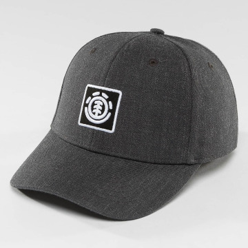 Element Snapback Cap Treelogo gray