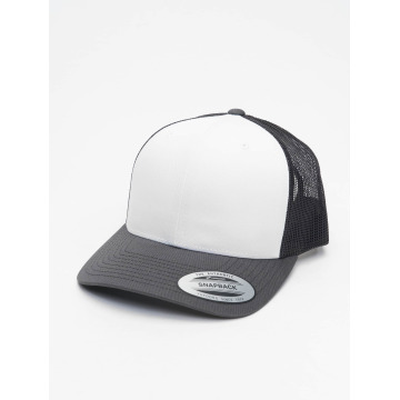 Flexfit Trucker Cap Retro Colored Front gray