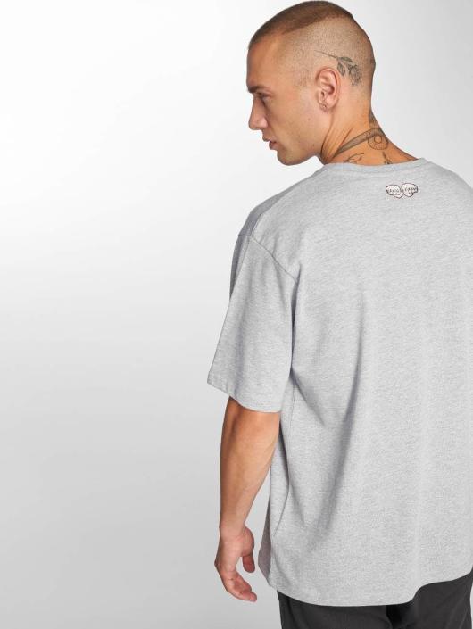 Dangerous DNGRS T-Shirt Snake gray