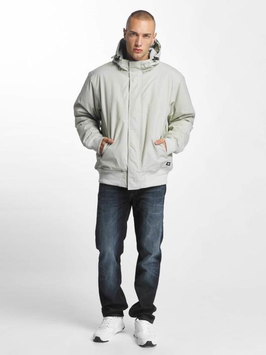 Dickies Winter Jacket Cornwell gray