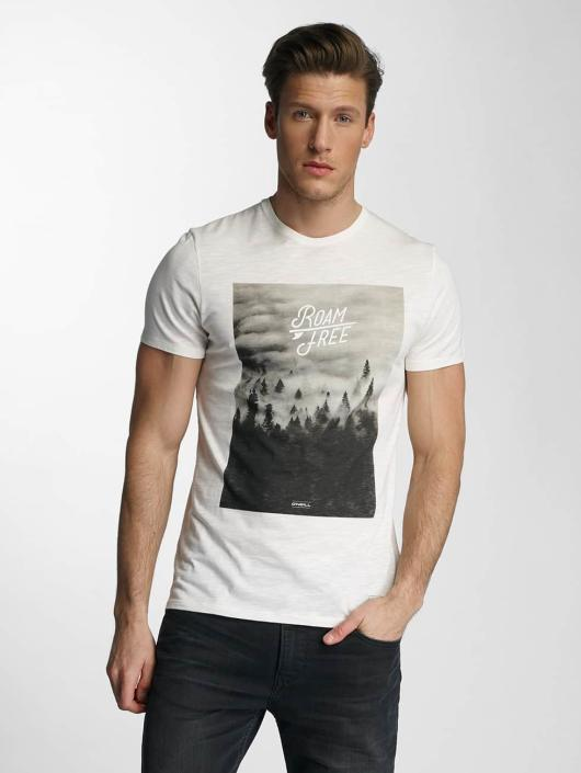 O'NEILL T-Shirt Wildlife beige
