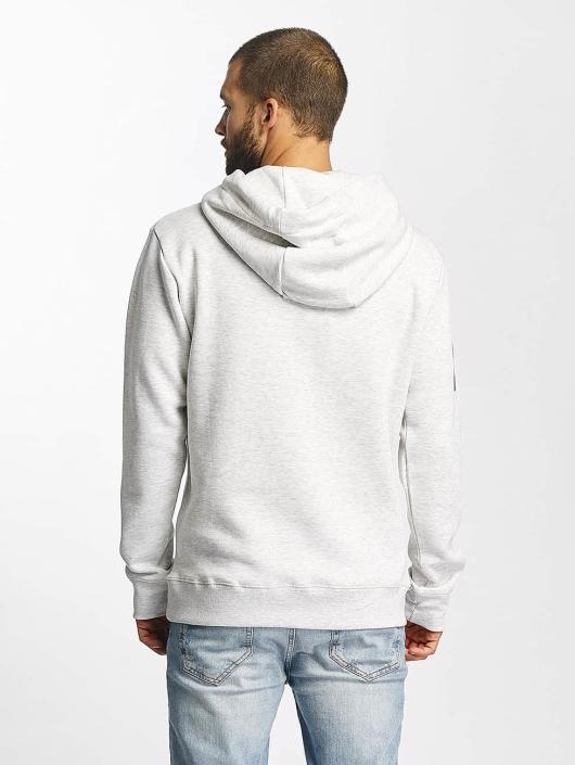 Sublevel Hoodie Printed gray
