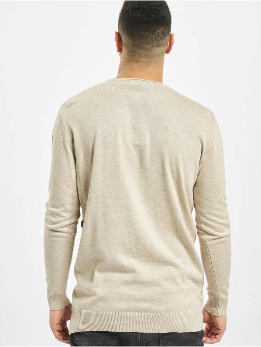 2Y Pullover Hazel beige