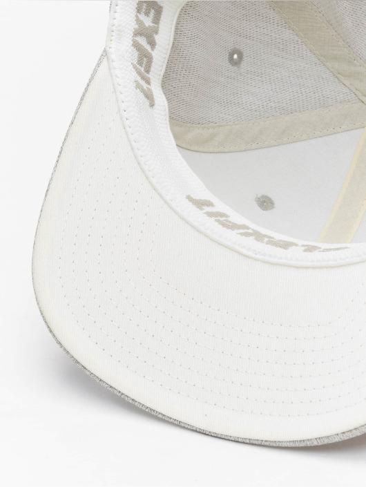 Flexfit Flexfitted Cap Pastel Melange gray