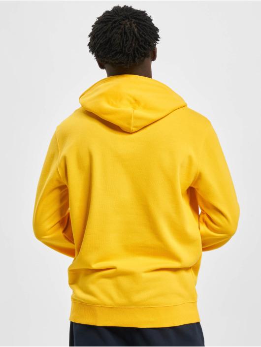Champion Hoodie Legacy yellow